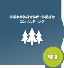 林業事業体経営診断・林業経営コンサルティング